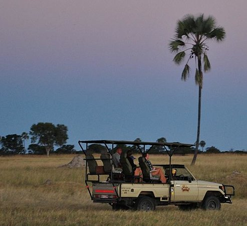 Hwange National Park, Zimbabwe: The afternoon game drive