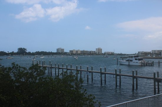 Jupiter Waterfront Inn: view from back stairs