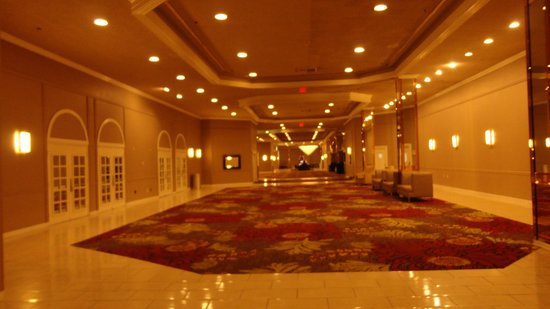 Plaza Hotel &amp; Casino : inside 