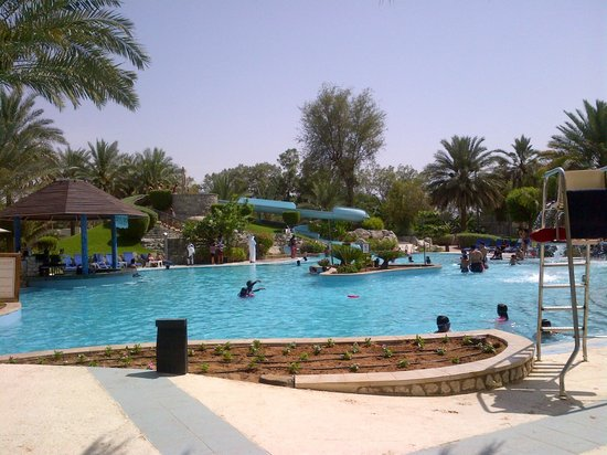 Hilton Al Ain: Family pool area