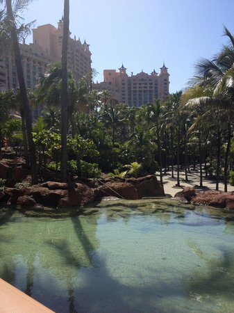 Riu Palace Paradise Island: Atlantis grounds
