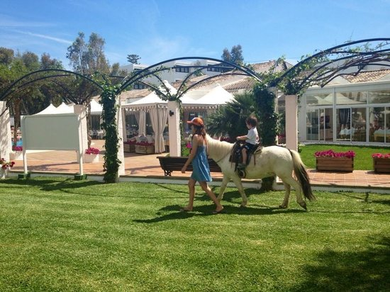 Iberostar Ciudad Blanca: Me taking my son on a pony ride round the pools. €5, fab!