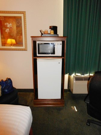 Greenstay Hotel & Suites: fridge