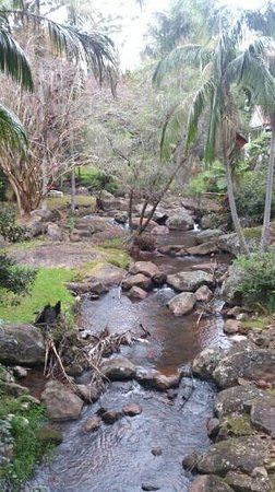 North Tamborine, Australia: beautiful gardens