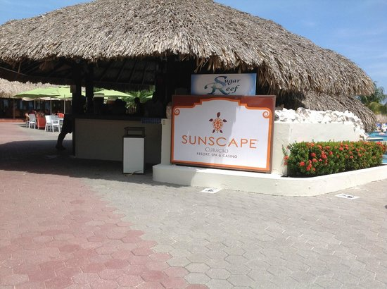 Sunscape Curacao Resort Spa & Casino - Curaçao: Sugar Reef Pool Bar - Great staff!