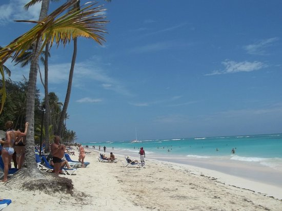 Barcelo Dominican Beach: Playa del hotel