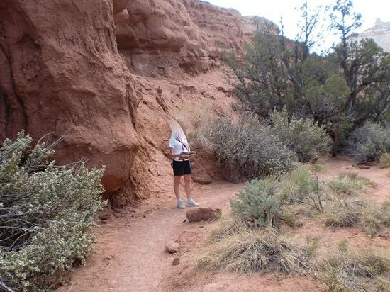 Cannonville, UT: on the Angel Something Trail
