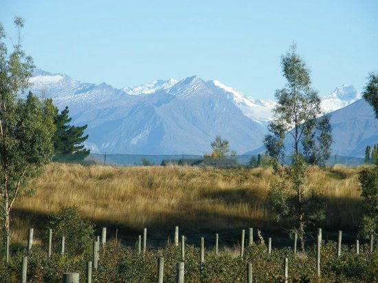 Photo of Berry Farm Homestay Wanaka