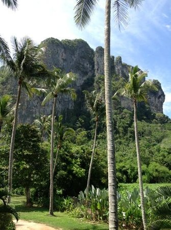 Aonang Paradise Resort: Amazing Cliff View Room