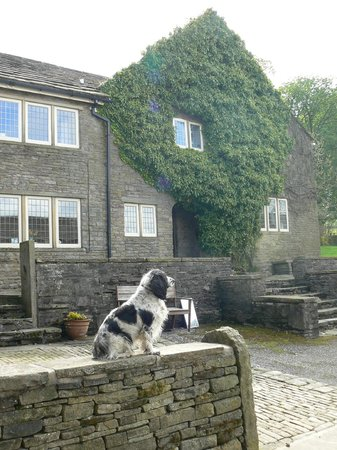 Macclesfield, UK: Friendly family dog in front of the farmhouse.
