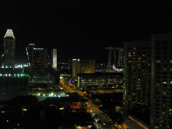 Carlton Hotel Singapore: View from club room