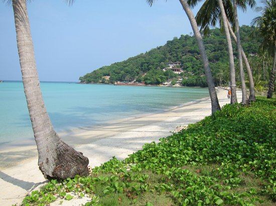 Outrigger Phi Phi Island Resort and Spa: Beach