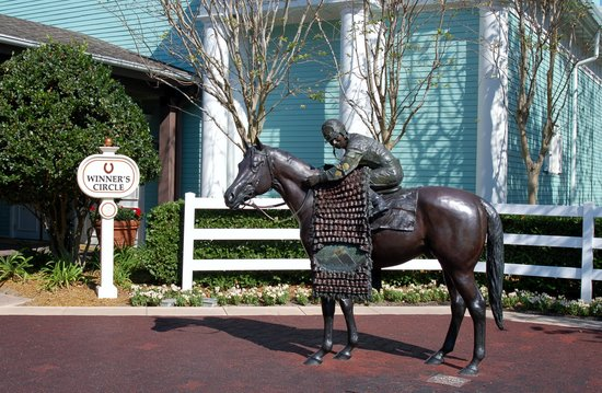 Disney's Saratoga Springs Resort & Spa: The Winner