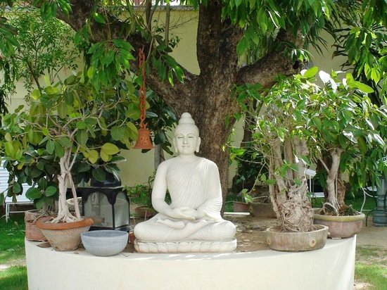 Hotel Anuraag Villa : There are about 5 to 6 statues in the garden, also a car...