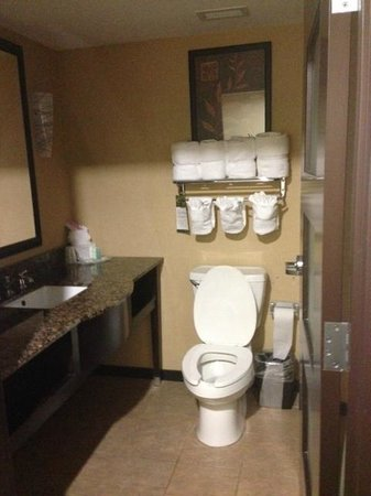 Comfort Suites Lexington: Bathroom