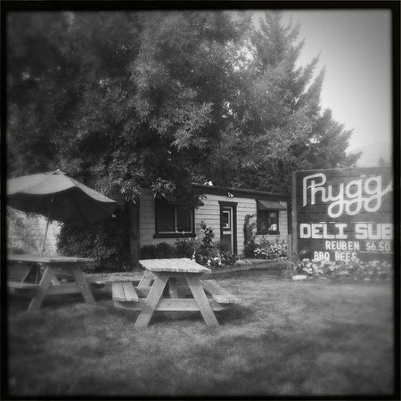Columbia Falls, MT: Phyggs Deli
