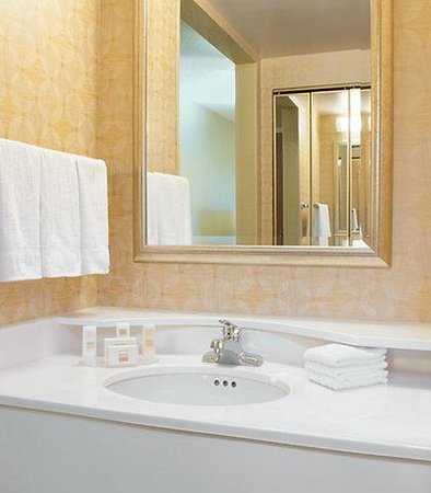 Fairfield Inn Orlando Lake Buena Vista in the Marriott Village: Guest Bathroom Vanity