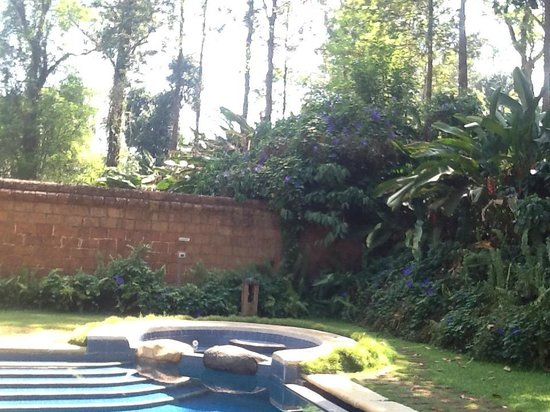 Orange County, Coorg: Our private pool.
