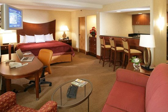 DoubleTree by Hilton Oak Ridge - Knoxville: King Bed Suite