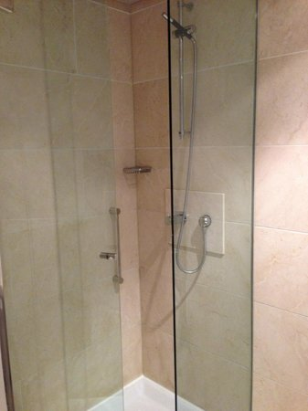 The Morrison, a DoubleTree by Hilton Hotel : Hotel shower