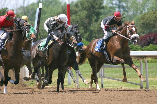 Clifton Park, tat de New York : Saratoga Horse Racing 