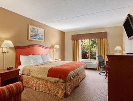 Ramada Harrisburg: Standard One King Bed Room