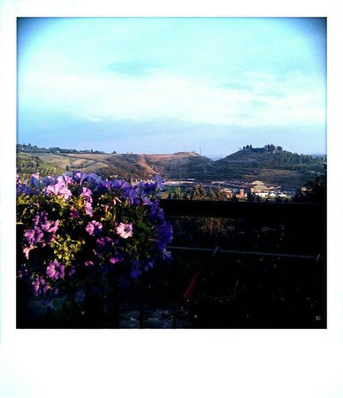 Castelfiorentino, Italy: View from terrace