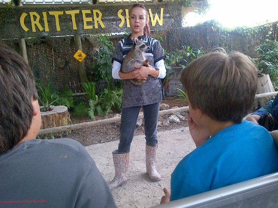 Clewiston, FL: Raccoon talk