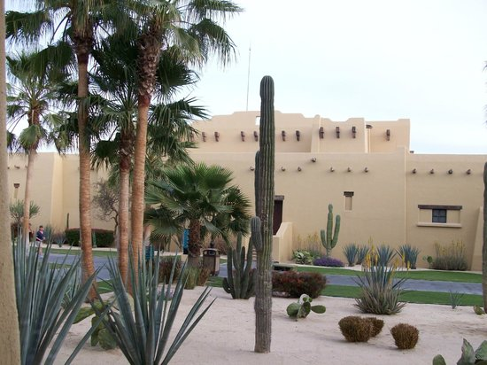 Hotel Riu Santa Fe: Immaculate grounds