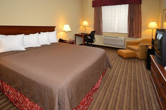 BEST WESTERN Lebanon Valley Inn & Suites: King Size Room