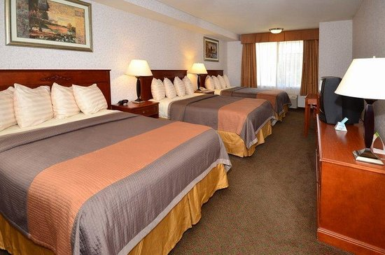 BEST WESTERN Airport Plaza Inn: Guest Room