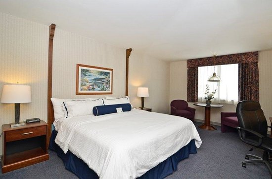 BEST WESTERN Plus Midway Hotel & Suites-Brookfield: Guest Room