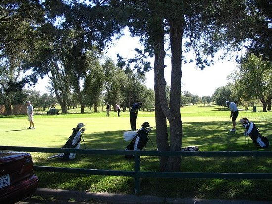Plainview, TX: Golf