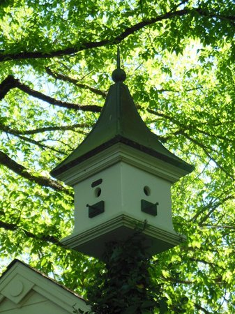 Cottage Grove Inn: One of the numerous bird houses