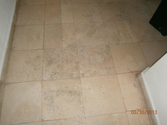 Buenaventura Grand Hotel and Spa: moldy floor