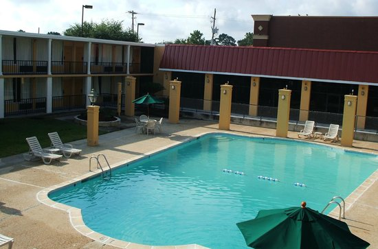 Thibodaux, LA: Refreshing Pool