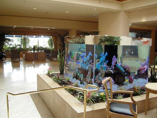 Crowne Plaza Redondo Beach & Marina: Upper Aquarium Lounge-The Place to Meet