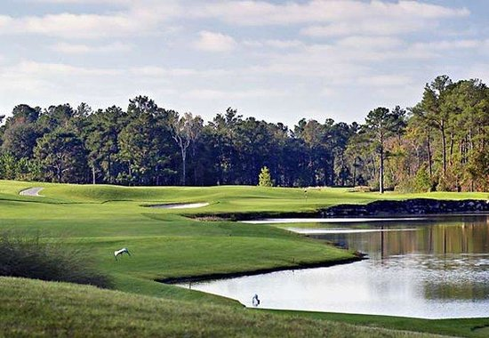 The Renaissance World Golf Village Resort: King & Bear
