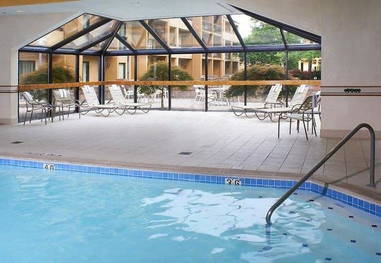 Courtyard by Marriott Lexington North: Indoor Pool