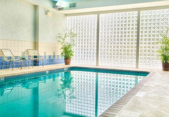 Courtyard by Marriott St. Petersburg Downtown: Indoor Pool