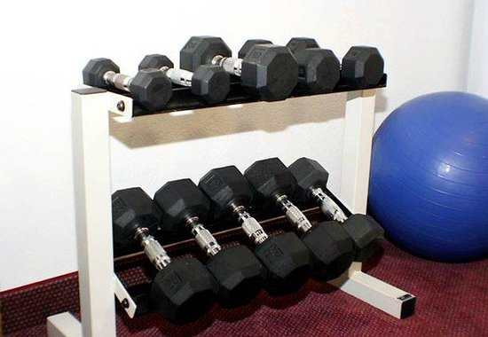 Courtyard by Marriott Houston Brookhollow: Free Weights