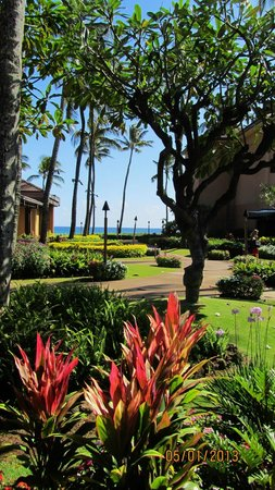 Sheraton Kauai Resort: Garden view of the grounds