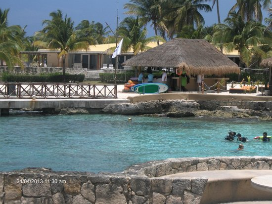 Presidente Inter-Continental Cozumel Resort & Spa: Great Snorkling & Swimming