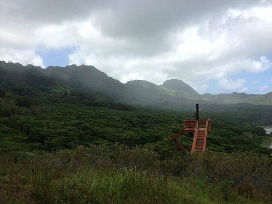 Koloa, : Zipline platform and surrounding expansive views