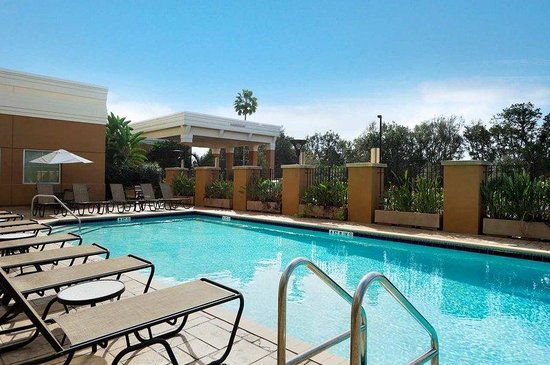 Embassy Suites Tampa - Brandon: Embassy Suites Tampa Brandon Pool