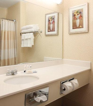 Fairfield Inn Bozeman: Guest Bathroom