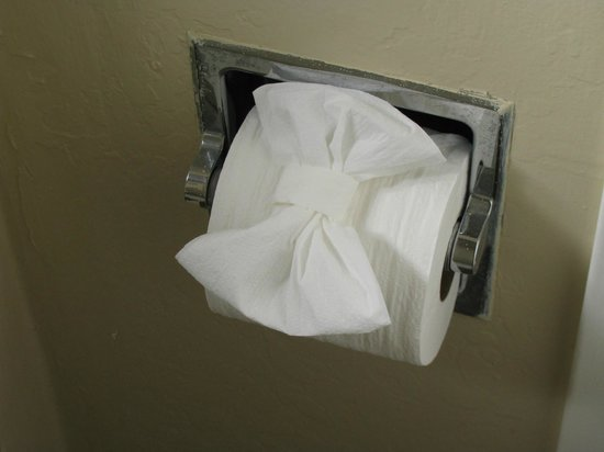 Super 8 Monterey/Carmel: decorative toilet paper!