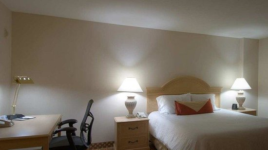 Hilton Garden Inn Mountain View: King Study Guest Room