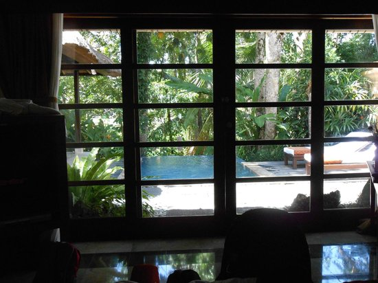 Komaneka at Monkey Forest: Our private pool
