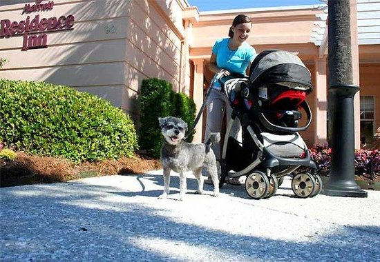 Residence Inn Charleston Downtown/Riverview: Pet Friendly
